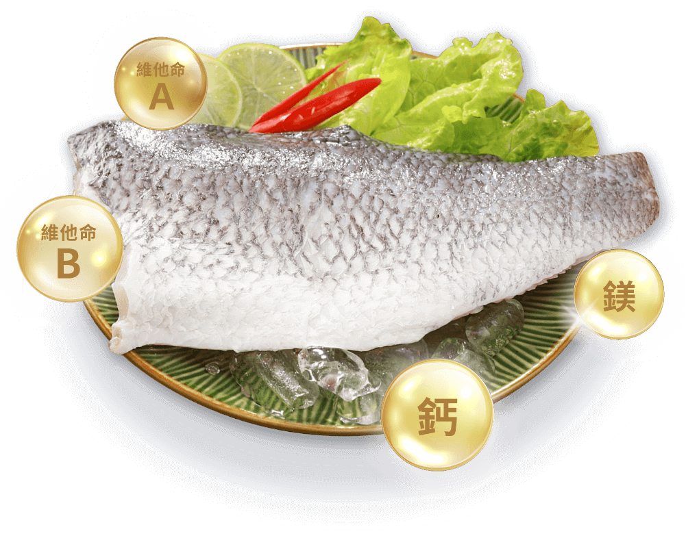 生鮮 鱸魚排